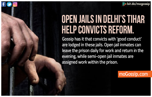 Tihar's 'open jails' don't feel like prison, they help convicts reform