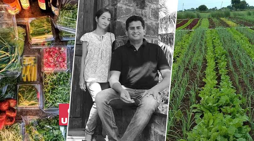 IT Couple Return From US to Farm Rare Organic Veggies.